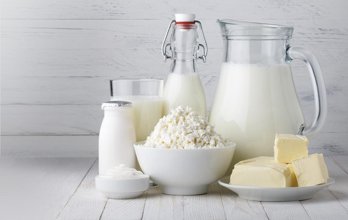 Productos Lácteos Revistas Especializadas